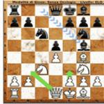 国际象棋弗里茨13