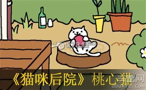 《猫咪后院》桃心猫需要什么道具才会休闲游戏出现?