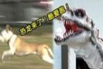 恐龙来袭 汪星人吓尿了