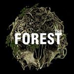 森林中文版