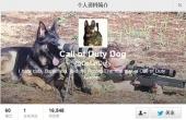 《使命召唤10》军犬亮点多  60秒内拆解一支M4A1步枪