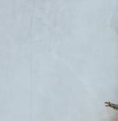 激战2中6月6日版本更新内容及职业平衡修改内容介绍