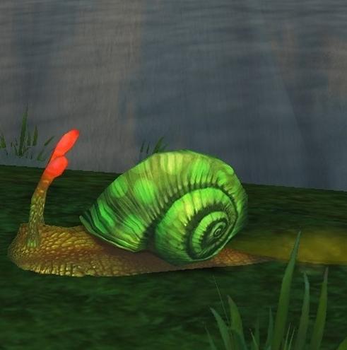 wow蜗牛壳玩具_魔兽世界6.0蜗牛壳掉落率有多少蜗牛壳掉落率一览_游戏攻略_斗