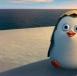 区块链游戏企鹅大陆官方版