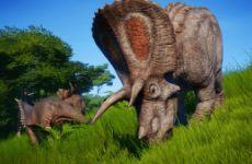 侏罗纪世界进化恐龙混养方法