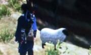 仙剑奇侠传6落日部支线迷途的小羊位置介绍