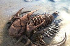 方舟生存进化手游三叶虫驯服方法