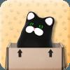 零重力猫箱
