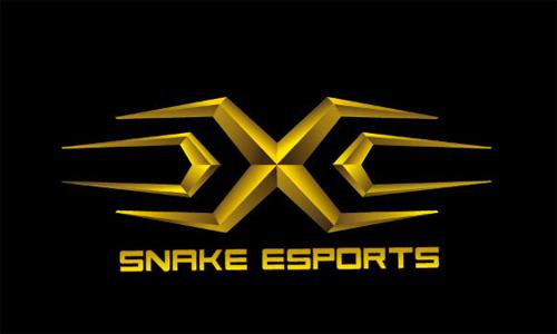 Snake电子竞技俱乐部