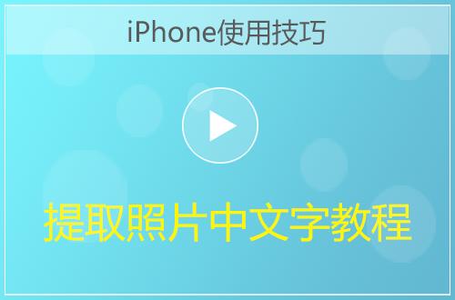 iPhone快速提取照片中的文字方法