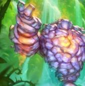 炉石传说拉斯塔哈的大乱斗魔精奥秘猎卡组搭配推荐