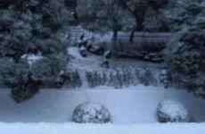 女孩遇大雪兴奋过度至面瘫 雪中玩一下午后眼嘴歪斜