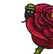 黑暗料理王小黑人的玫瑰获得方法