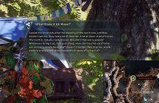 《圣歌》网曝剧本缺少方向性  编剧早已在游戏文本中回答