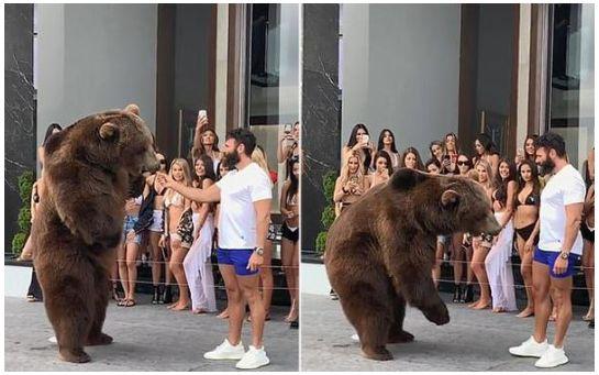 美国富豪派对喂食棕熊是怎么回事-美国富豪派对喂食棕熊的具体情况介绍