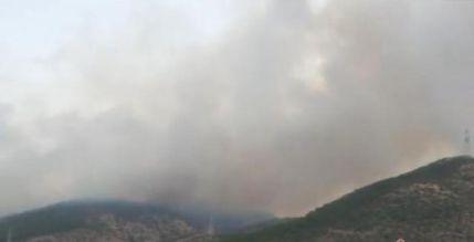 丽江玉龙发生山火的具体情况