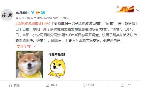 """给狗取名城管被行拘:安徽阜阳一男子给狗取名""""城管""""、""""协管"""",被行政拘留十日"""