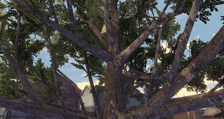 明日之后花瓣树飘叶树位置介绍