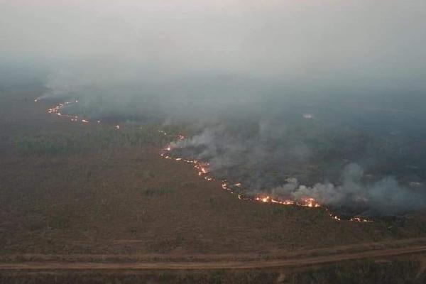 亚马逊雨林大火是怎么回事-亚马逊雨林大火详情介绍