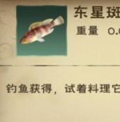创造与魔法东星斑鱼食谱大全