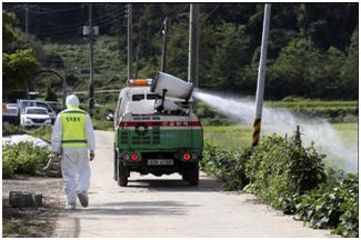 韩国确认境内首次出现非洲猪瘟疫情,将扑杀近4000头猪