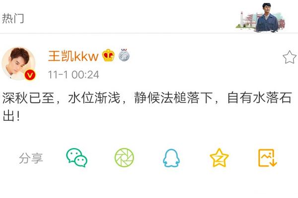 王凯回应网络谣言:静候法槌落下,自有水落石出!