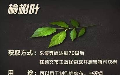 明日之后榆树叶获取方法介绍