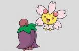 宝可梦剑盾樱花儿图鉴一览