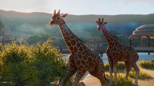 動物園之星展示區動物喂食方法一覽