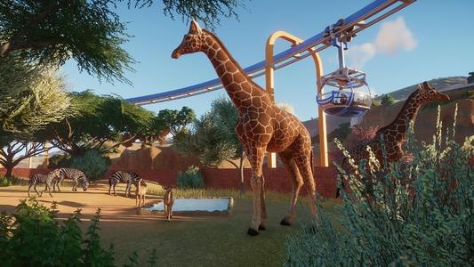 動物園之星平整下壓地面方法介紹