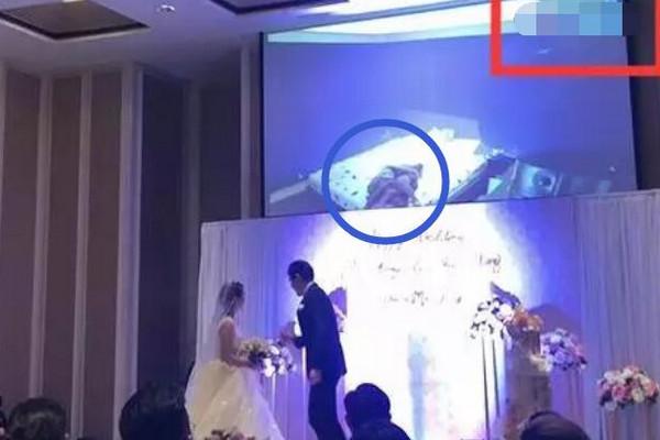 新郎婚礼扒皮新娘视频