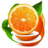 橙子視頻APP下載污