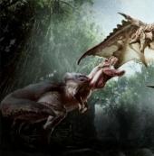 怪物猎人世界金银火龙的套装效果分享