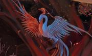 妄想山海鲲第六次进化位置介绍