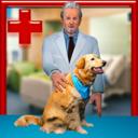 宠物外科医院游戏