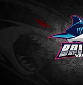 【2021战队巡礼】白鲨集结完毕,势必鲨出重围问鼎巅峰